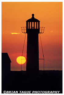 Monomoy Point Light sunset